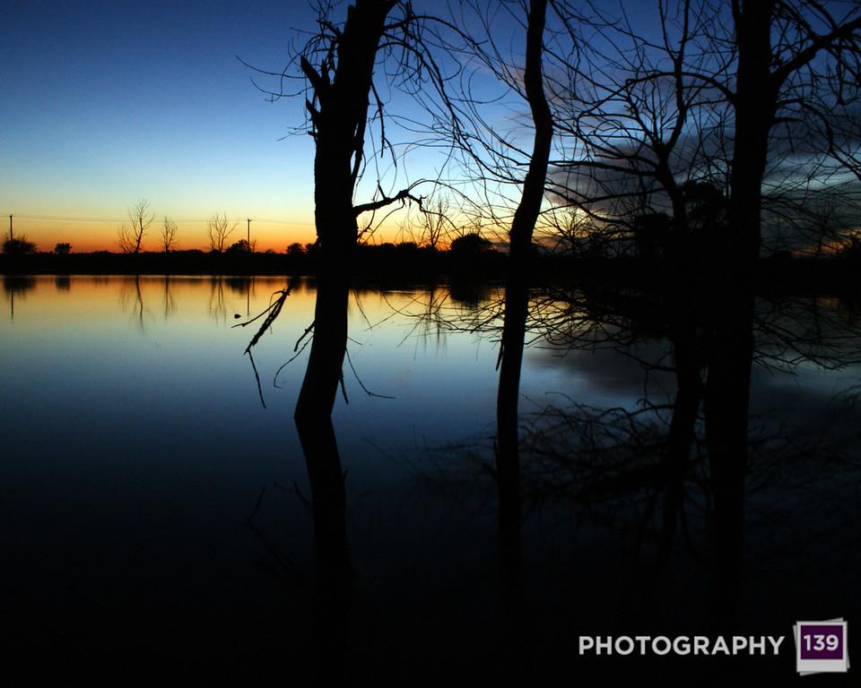 2010 - Pufferbilly Days Photo Contest Nominee