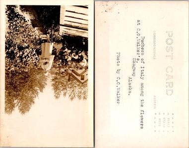 Postcard-FF-680W USA Alaska (AK) -image2 (3)