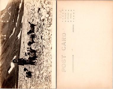 Postcard-FF-680W USA Alaska (AK) -image2