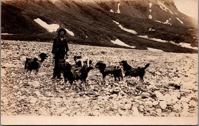 Postcard-FF-680W USA Alaska (AK) - - - -_0003_b