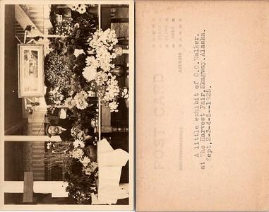 Postcard-FF-680W USA Alaska (AK) -image3 (2)