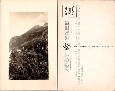 Postcard-FF-680W USA Alaska (AK) -image5 (2)