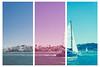 Farallon Islands 2014-10-12 011_triptych-3