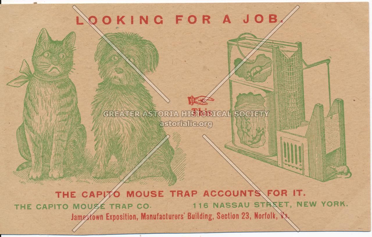 Capito Mouse Trap
