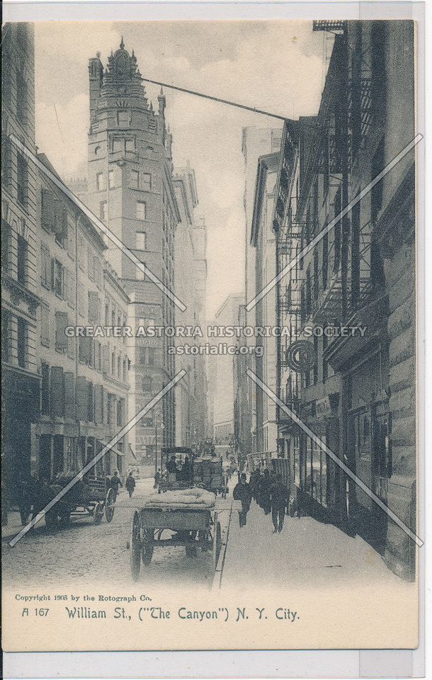 """William St., (""""The Canyon"""") N.Y. City."""