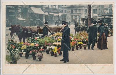 Flower Vender's Display
