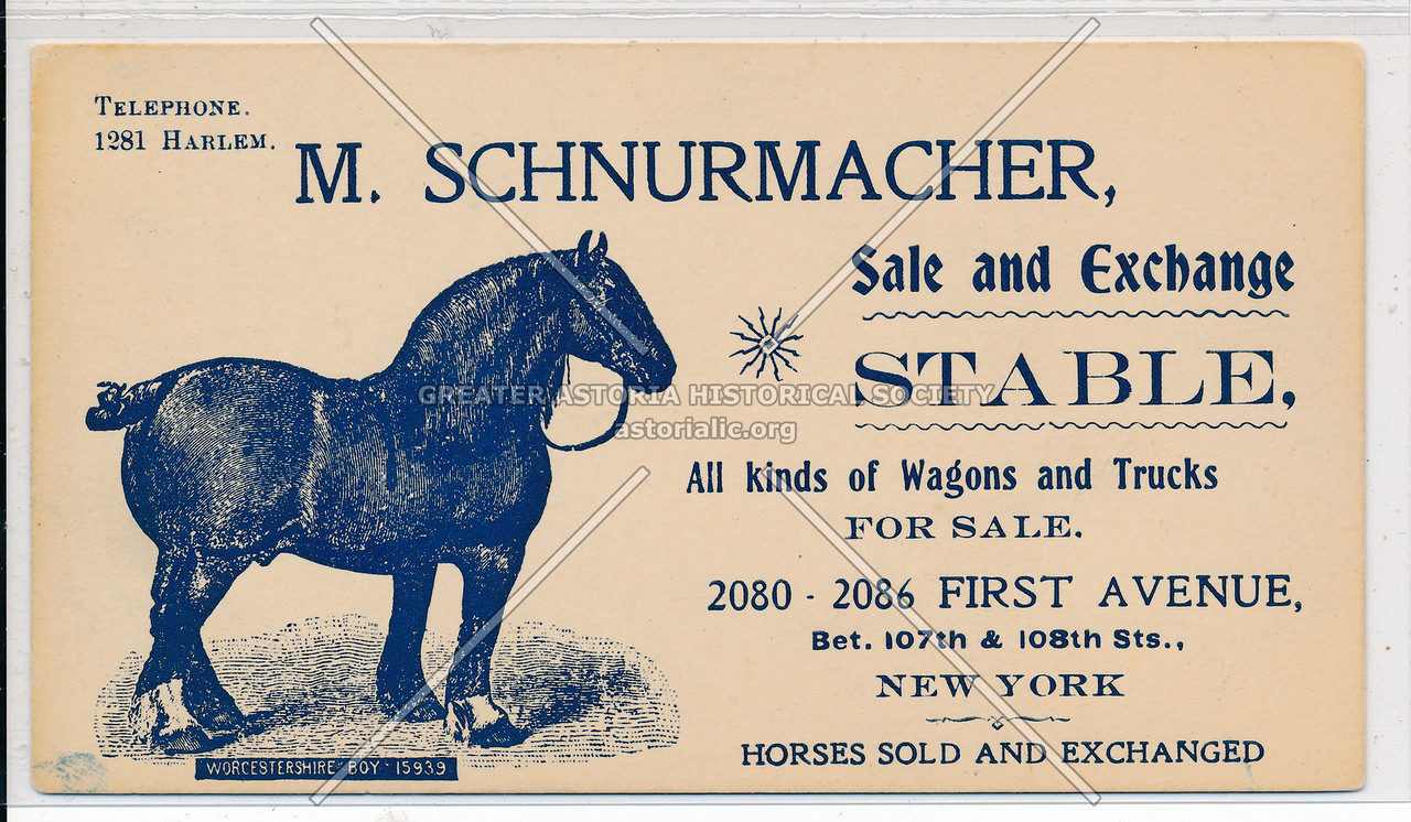 Schnurmacher Stables, 2080 First Ave (107 St), NYC
