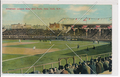 American League Baseball Park, NY, N.Y.C. (25893)