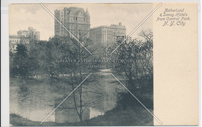 Netherland & Savoy Hotels from Central Park