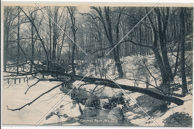 Stream in Central Park during Winter