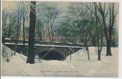 Winter Scene in Central Park