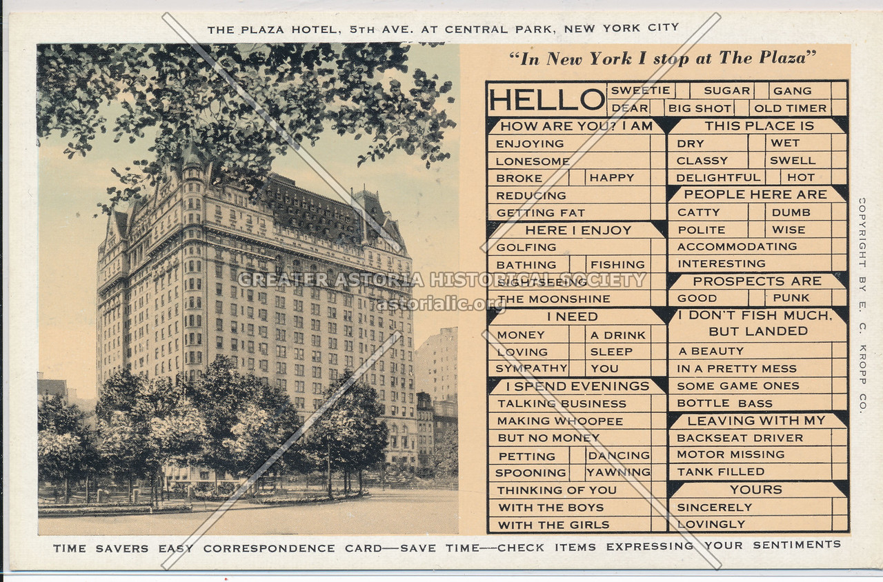 The Plaza Hotel, 5th Ave., At Central Park, New York City