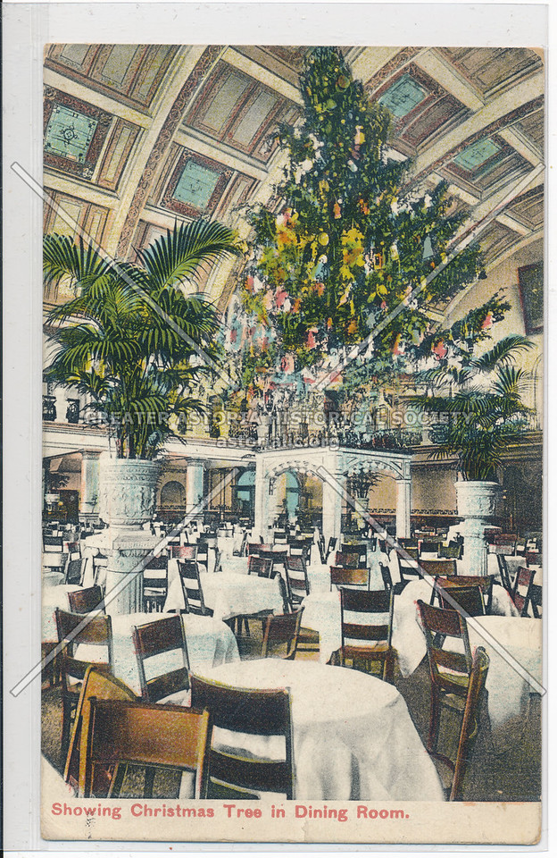 Showing Christmas Tree in Dining Room