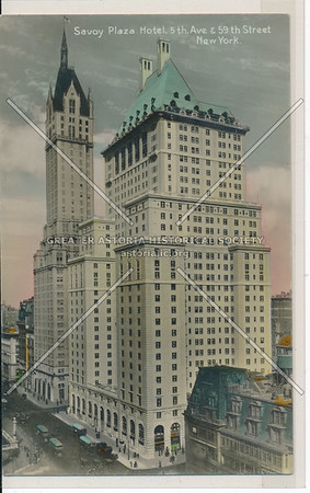 Savoy Plaza Hotel, 5th Ave. & 59th Street, New York