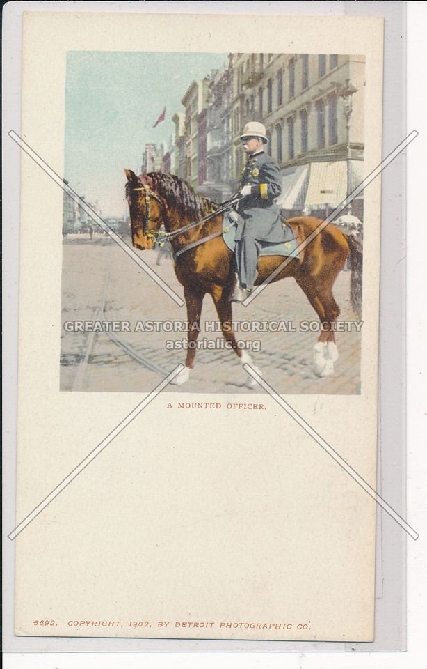 Mounted Officer, NYC