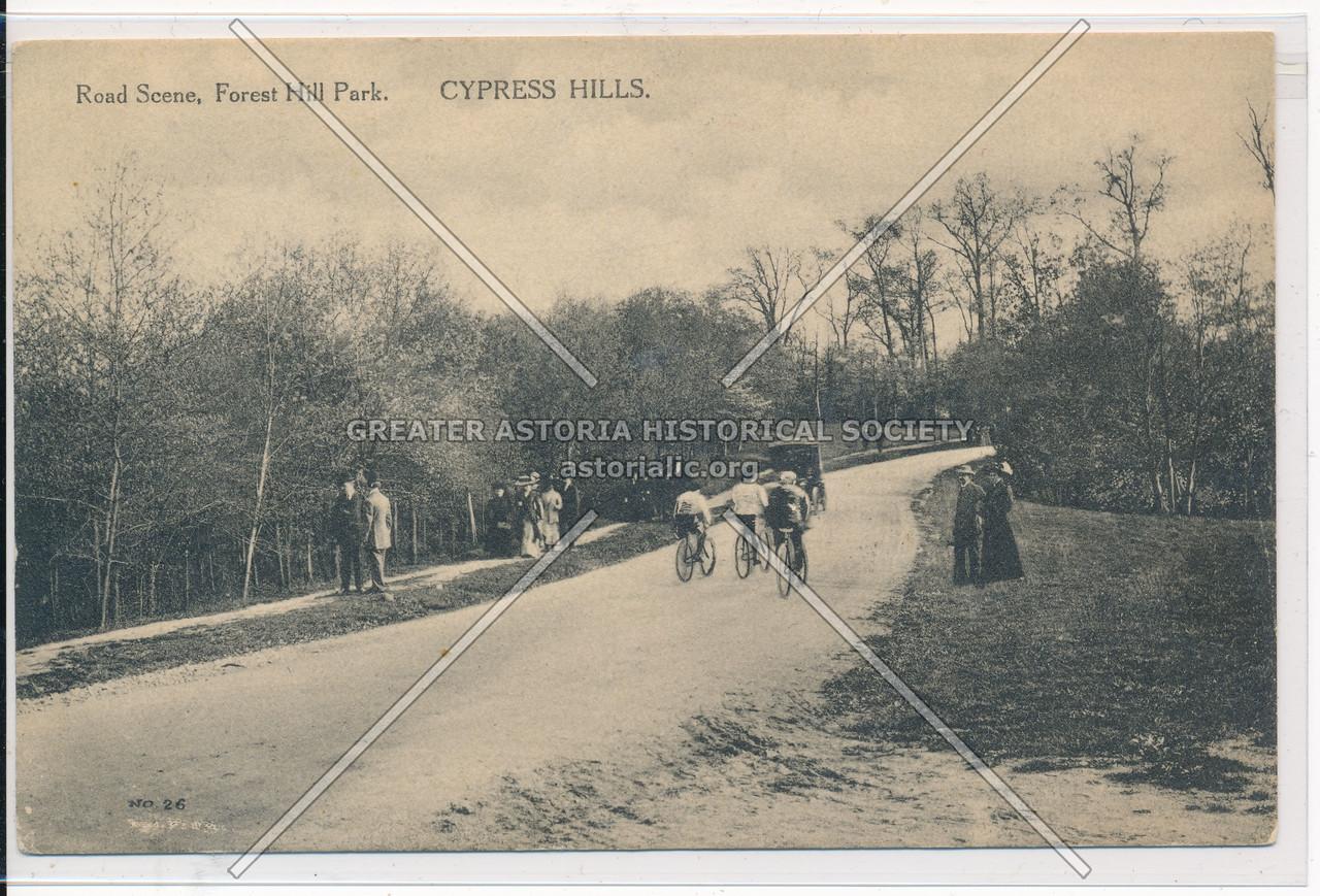Road Scene, Forest Hills Park, Cypress Hills, BK.