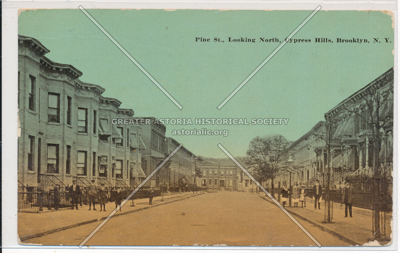 Pine Street., looking North, Cypress Hills, BK.