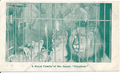 "A Royal Family of the Jungle ""Kingdom"", Bostock's, Coney Island, N.Y."