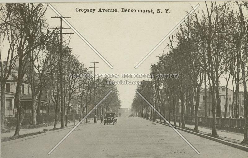 Cropsey Avenue, Bensonhurst, N.Y.