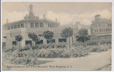 Seaview Hospital rose garden