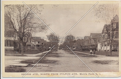 Briggs Ave (117 St)., North from Fulton Ave (Jamaica Ave)., Morris Park, L.I.