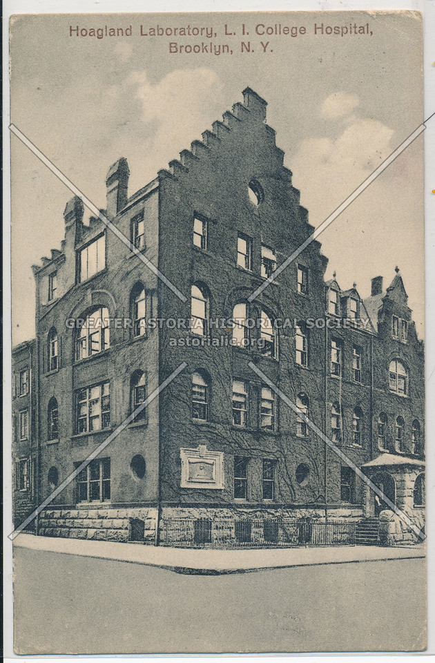 Hoagland Laboratory, L I College Hospital, Bklyn