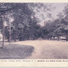 Bowne  Avenue (Bowne Street) Looking South, Flushing, L.I.