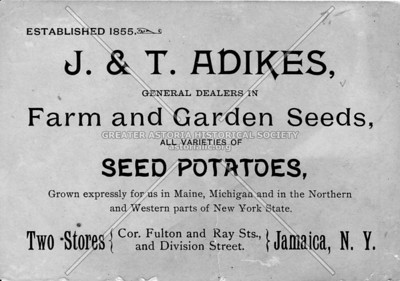 J. & T. Adikes, general dealers in Farm and Garden Seeds - Cor. Fulton and Ray Sts., and Division Street. Jamaica, L.I., N.Y.
