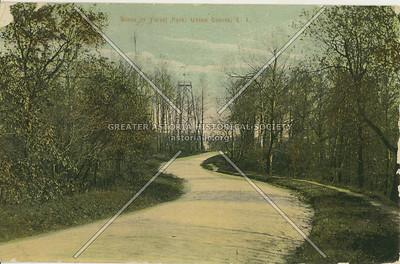 Scene in Forest Park, Union Course, LI