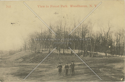 View in Forest Park, Woodhaven, NY