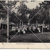 Picnic Grounds, North Beach