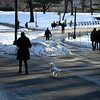 09 Jan 2018 -- Pulling the poodle in Central Park, New York City.