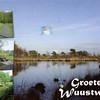 Wuustwezel - Beautiful nature of the Belgian Campine