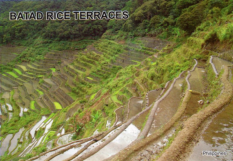Rice terraces of the Philipine Cordilleras