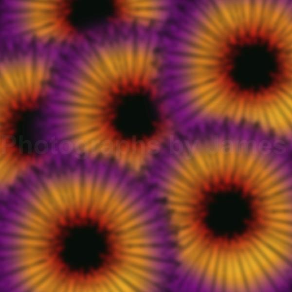 816. Black Heart Flowers