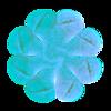 363. Allium Wheel White Transparency