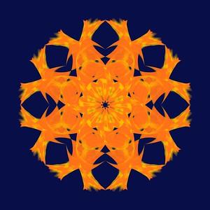 469. Tangerine Jello Slice