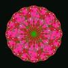 682. Pink Exploding Sphere Dark Background