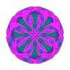 Eight Point Compass Purple