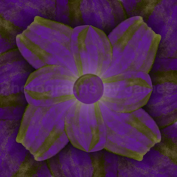 Corporeal Flower Purple
