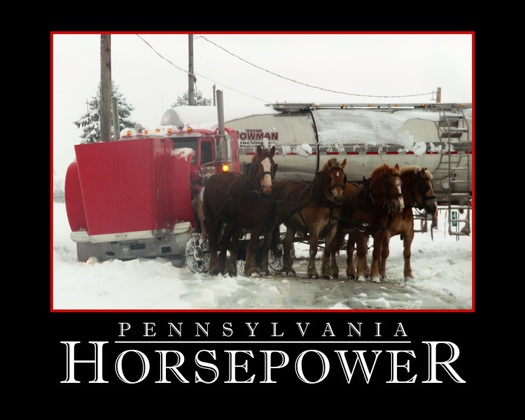 A scene captured on the way to work in February 2011 in Ottawa, Pennsylvania. Photo taken as the horses were being hooked up to the truck. After taking this photo I shot a video of the horse team pulled the stuck milk truck out of the snow. The video went viral with well over a million views on social media networks.