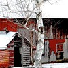 Vermont Barn in Snow