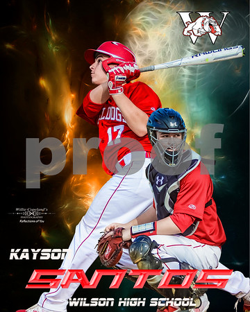 Sample Posters and Banners for Baseball and Softball