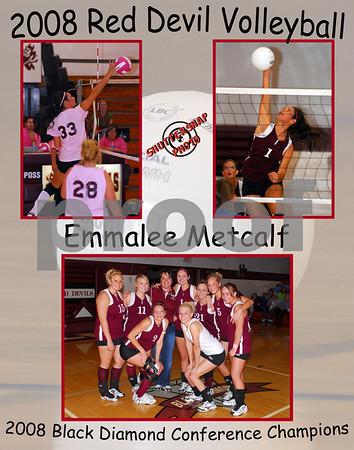 Sesser Poster - Metcalf