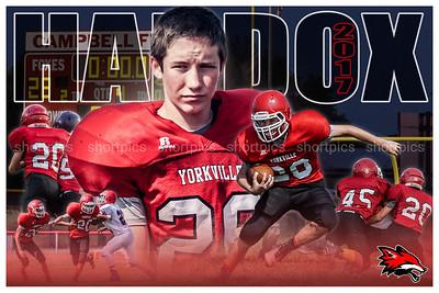 2017 Lukas Haddox Football Poster 3