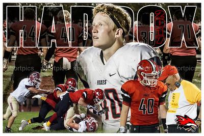 2017 Zach Haddox Football Poster