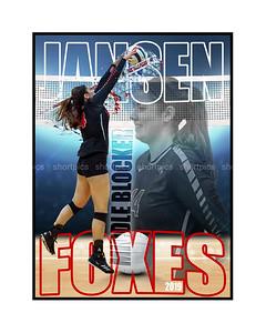 16X20 Jansen Volleyball Print