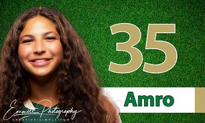 35-Amro