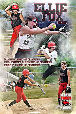 Ellie Fox Softball Poster Championships Included