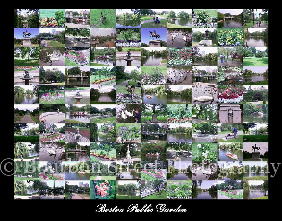"<font size=""+2"">Boston Public Garden 11x14</font>"